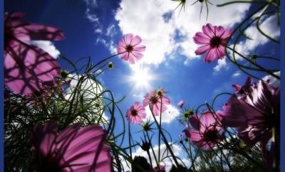Primavera-Verão-Tendências-Luxos-e-BrilhosD