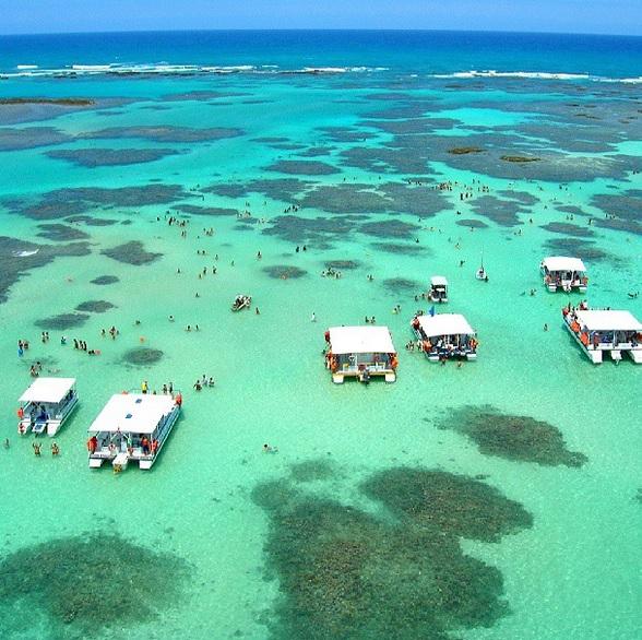 Férias-Praia-Maragogi